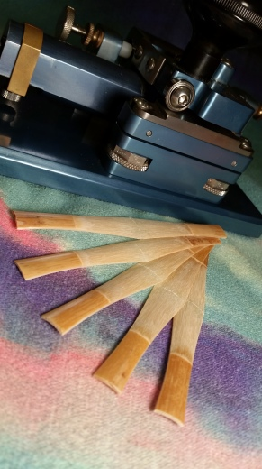 Gouged shaped profiled bassoon cane
